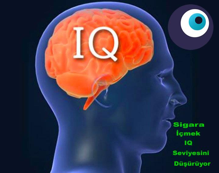 Sigaranın Zararlarına IQ Düşüren Bir Yenisi Daha Eklendi
