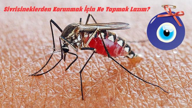 Sivrisineklerden Korunmak İçin Ne Yapmak Lazım?