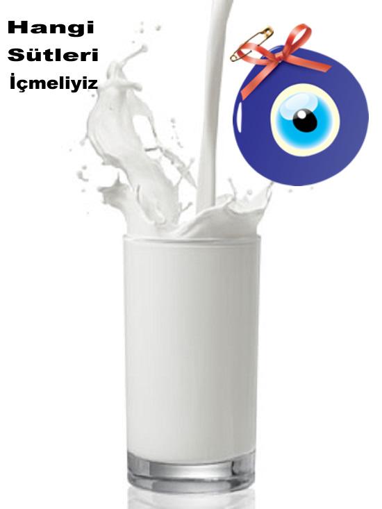 Hangi Sütleri İçmeliyiz